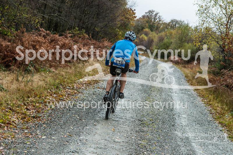 SportpicturesCymru - 1020- DSC_7402