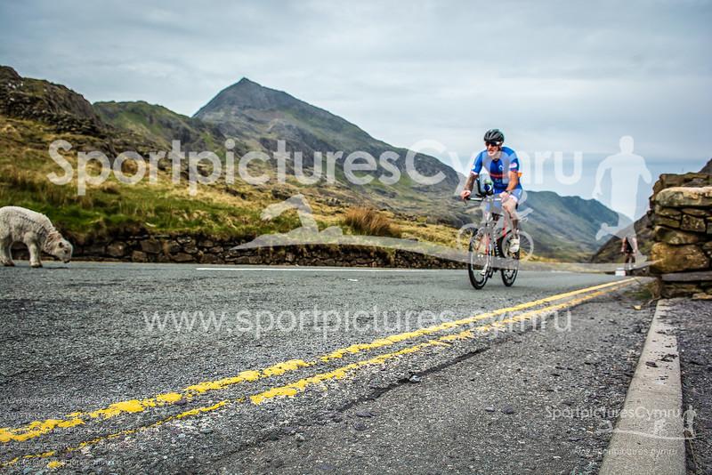 SportpicturesCymru -3012-DSC_7194(10-11-29)