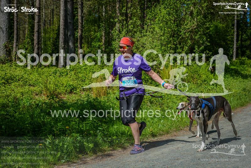 SportpicturesCymru -3019-DSC_5944