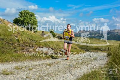 Scott Snowdonia Trail Marathon -3006-DSC_9894