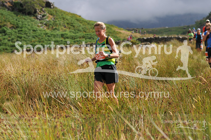 Scott Snowdonia Trail Marathon -3952-D30_7511