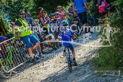 SportpicturesCymru -4254-DSC_7478