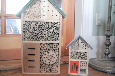 WP_SEED_Barn_pollinator_home__030818_AB