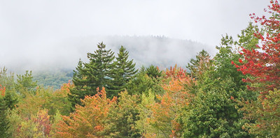 WP_fall_foliage_trees_100418_AB