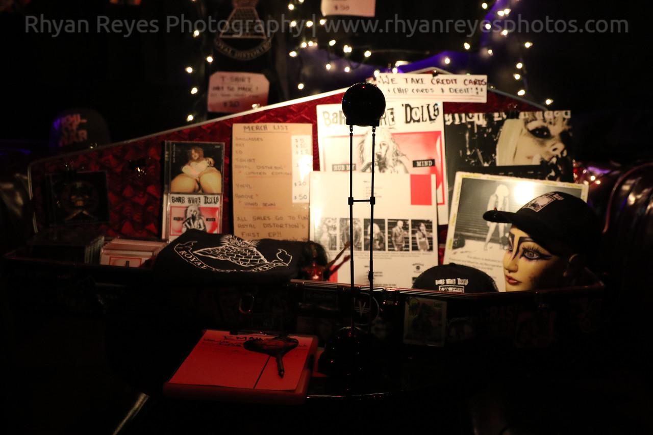 Bands_At_The_Viper_Room_0010_RR