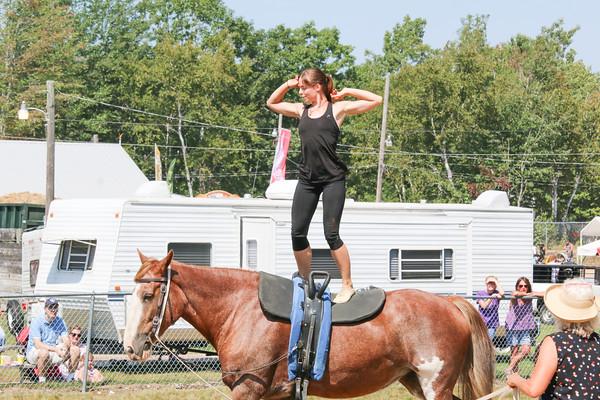 WP_BH_Fair_Equestrian_Valuting_1_090618_JS
