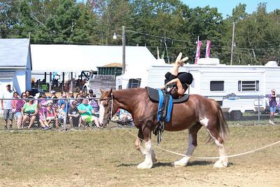 WP_BH_Fair_Equestrian_Valuting_3_090618_JS