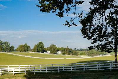 Manchester Horse Farm, Lexington, Ky