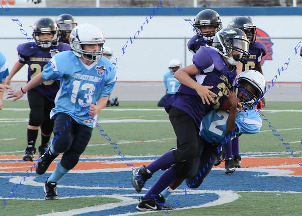 Ravens vs. Titans - Sept 17, 2011