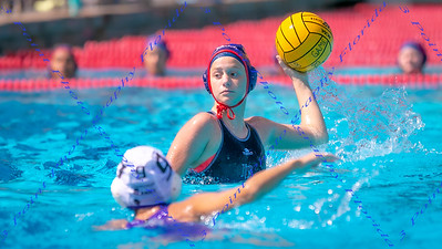 LBHS V Waterpolo vs Gainesville - Feb 22, 2020