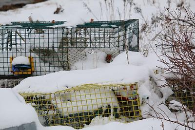 IA_snow_photos_traps_041119_ML
