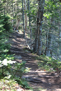 IA_hike_trail_082219_ML