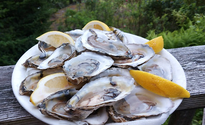 AP_Fresh_from_the_Sea_Raw_oysters_080119_TO