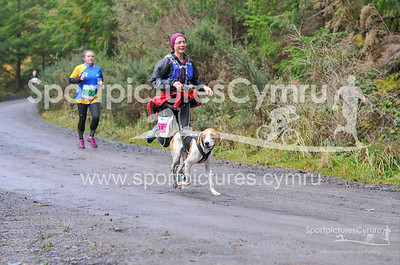 Betws Trail - 5000- DSC_2212