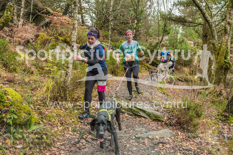 Betws Trail - 5002- DSC_6577
