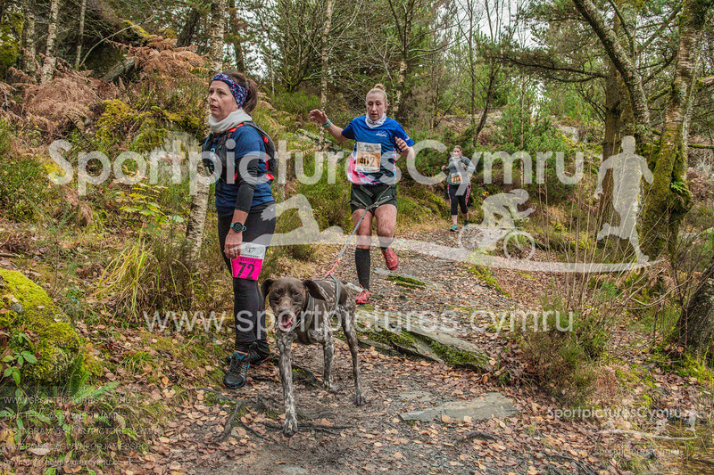 Betws Trail - 5007- DSC_6583