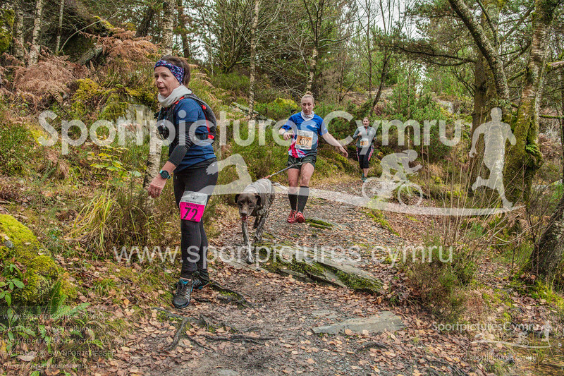 Betws Trail - 5005- DSC_6581