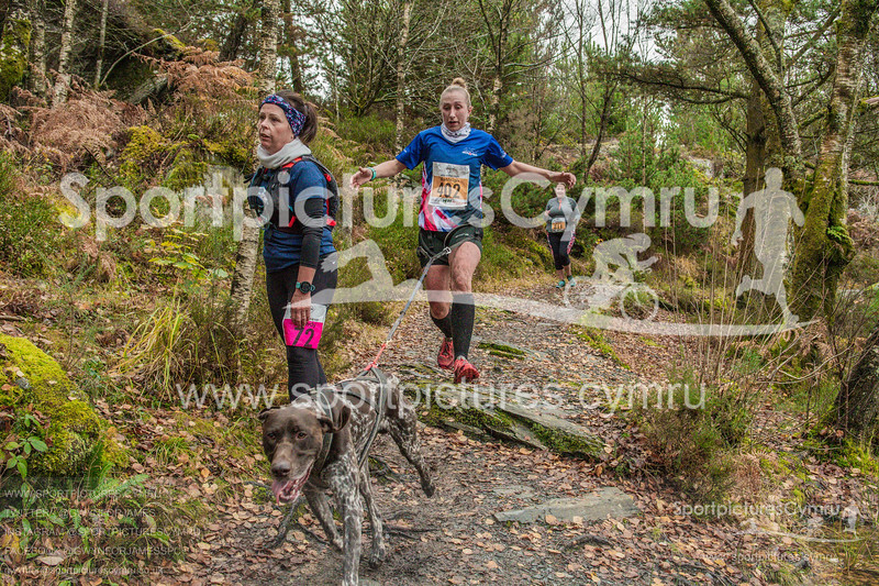 Betws Trail - 5008- DSC_6584