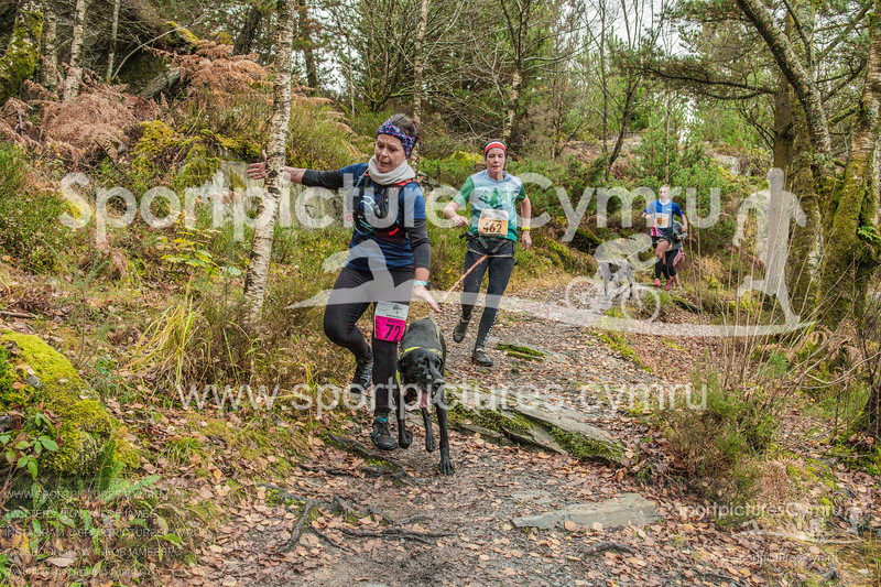 Betws Trail - 5000- DSC_6575