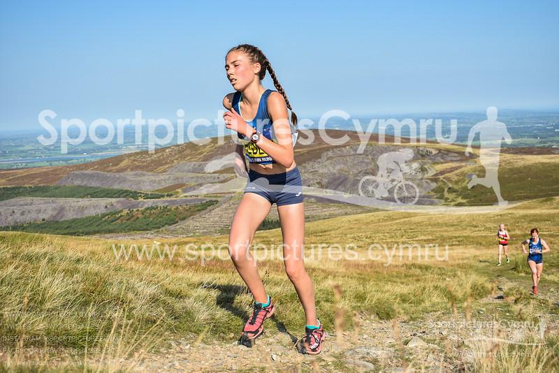 SportpicturesCymru - 5017 - DSC_0033