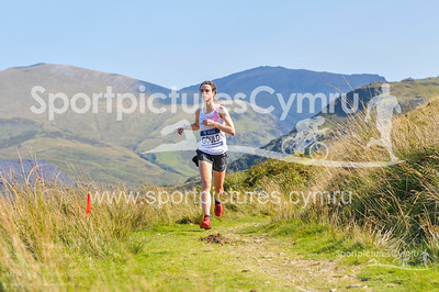SportpicturesCymru - 5018 - DSC_7850
