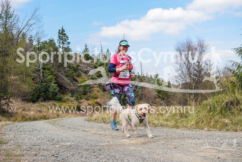 Goldrush Canicross at 2 Miles - SportpicturesCymru