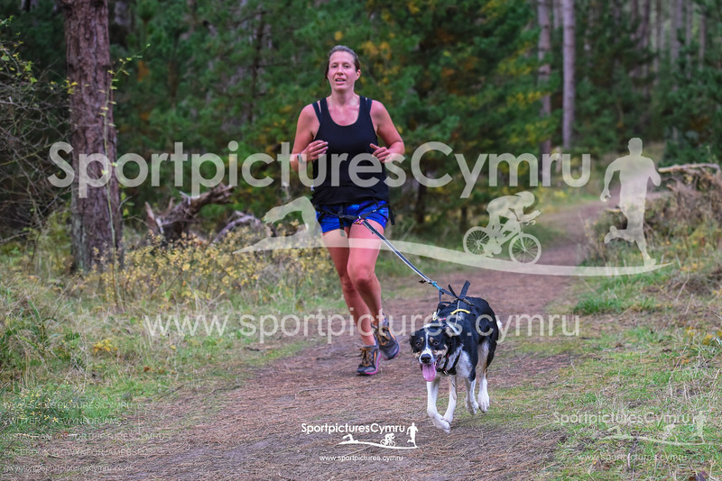 SportpicturesCymru - 5002- SPC_7180