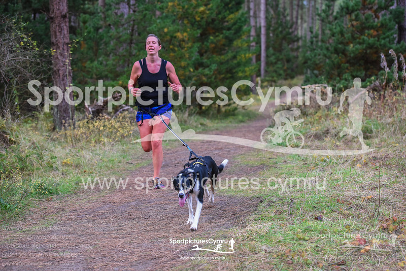 SportpicturesCymru - 5003- SPC_7181