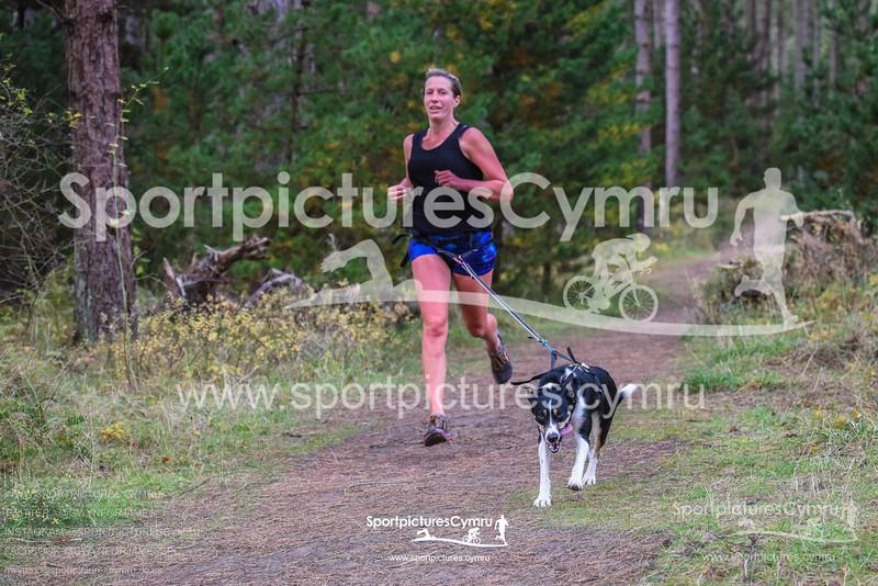 SportpicturesCymru - 5001- SPC_7179