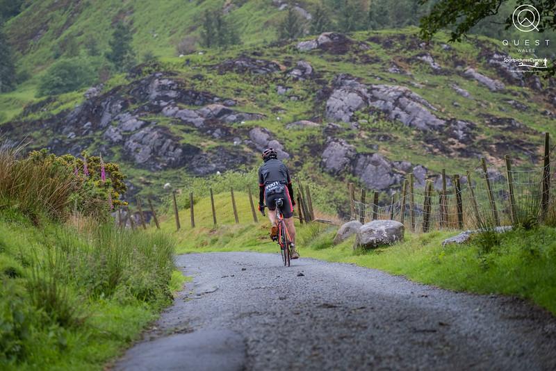 SportpicturesCymru -1007 - DSCF5829_