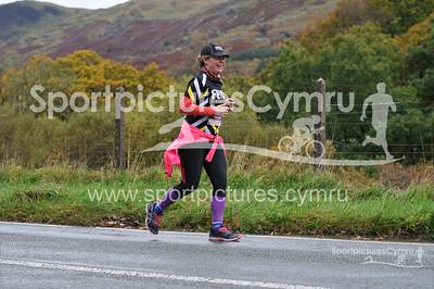 Snowdonia Marathon - 7687- DSC_1009-3006