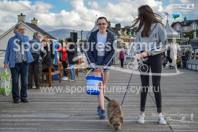 SportpicturesCymru - 5011 - 022