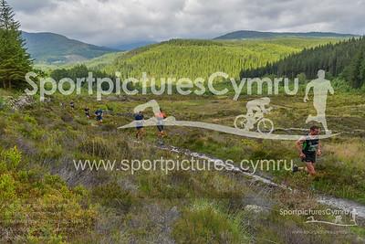 Trail Marathon Wales -1273 - DSC_8469_