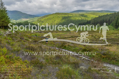 Trail Marathon Wales -1270 - DSC_8448_
