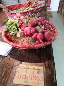 AP_Fresh_from_Farm_YB_radish_071119