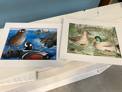 IA_Junior_Duck_Stamp_comp_paintings_050219_ML