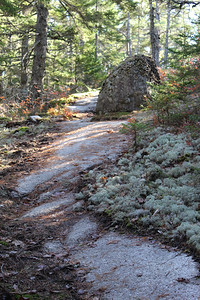 WP_lookout_rock_path_110719_AB