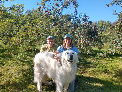 AP_Fresh_from_Farm_5_Star_Nursery_Dog_092619_TO
