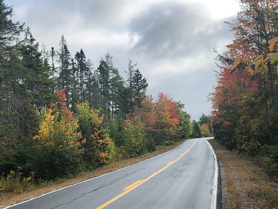 CP_penobscot_fall_colors_two_092619_AB