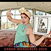 Stray Rescue Urban Wanderers-015