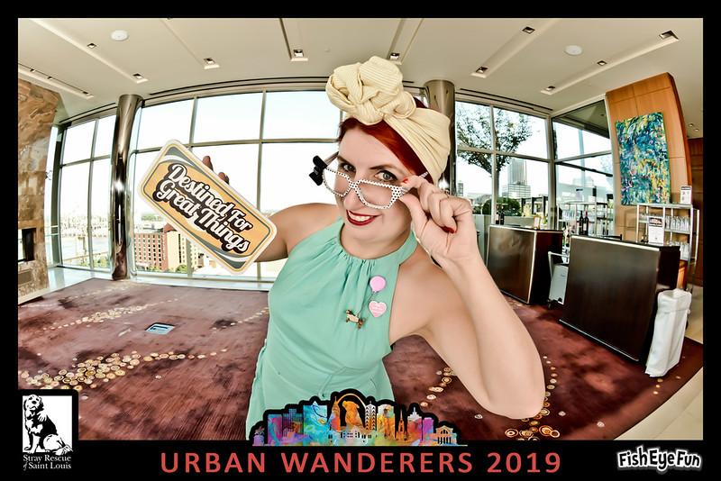 Stray Rescue Urban Wanderers-014