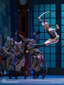 Joseph Massarelli and artists of Het Nationale Ballet