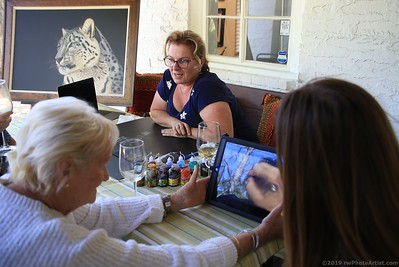 June 1, 2019:  Heather Lara demonstrated her scratchboard techniques and Wildlife Research Institute's Leigh Bittner educated on the negative side of using chemical traps and how it affects the food chain.