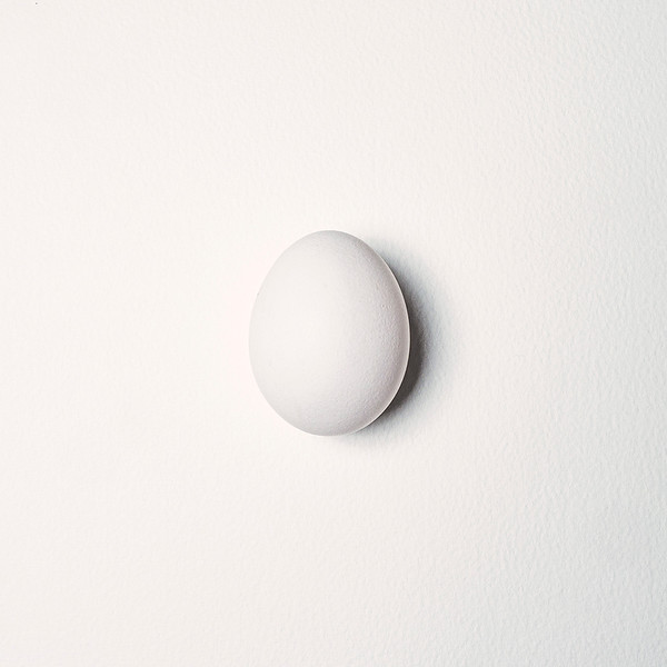 Section A - Projected - 2nd - Egg on Paper by Graham Herbert