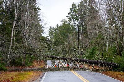 CP_storm_photos_blocked_road_120320_RW