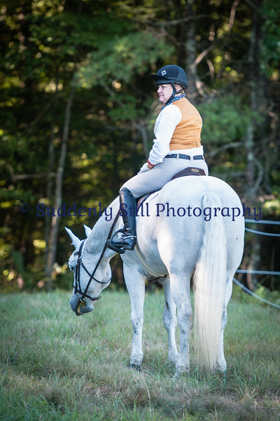 9-5 Informal @ Myrhe Equine