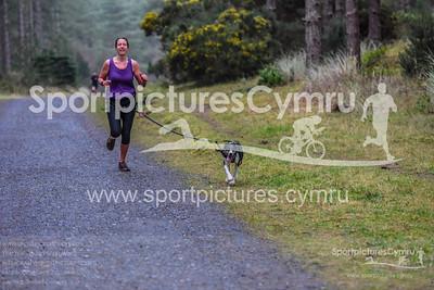 Newborough Forest Park Run - 5002 - SPC_9666_