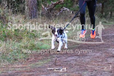 Newborough Forest Park Run - 5003 - SPC_8898_
