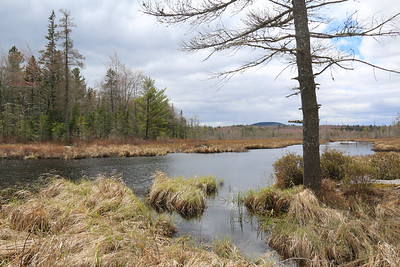 WP_sperry_pond_access_view_050720_AB