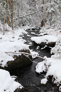 WP_snow_scenics_mill_creek_2_110520_EF